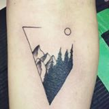 Quick little nature/geometry inspired tattoo done recen...